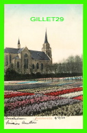 HAARLEM, PAYS-BAS - HIACINTHENVELDEN -  WRITTEN IN 1905 -  J, H. SCHAEFER - - Haarlem