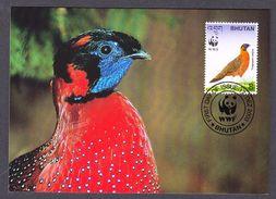 BHUTAN 2003 MAXIMUM CARD BIRDS - SATYR TRAGOPAN - Gallináceos & Faisanes