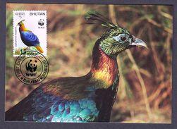 BHUTAN 2003 MAXIMUM CARD BIRDS - HIMALAYAN MONAL - Gallináceos & Faisanes