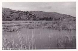 FONDI - LATINA - LE PALUDI  - PICCOLA FOTO DEL 1946 - Lieux