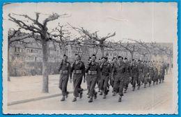 PHOTO Photographie - Forces Françaises D'Occupation (a Priori à Spire SPEYER Allemagne) * Marche Militaire MILITARIA - Guerre, Militaire