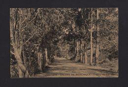 MONCHIQUE POSTCARD 1910 Years CALDAS DE MONCHIQUE ALGARVE PORTUGAL - Faro