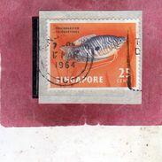 SINGAPORE SINGAPOUR 1962 FAUNA FISHES FISH PESCI PESCE POISSONS POISSON Twospot Gournaml CENT. 25c USATOUSED OBLITERE' - Singapore (1959-...)