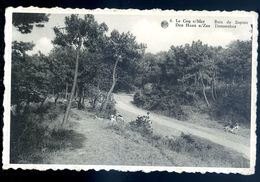 Cpa De Belgique Le Coq Sur Mer Bois De Sapins -- Den Haan A/Zee   Dennenbos    SEP17-76 - De Haan