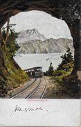 VITZNAU-RIGI-BAHN → Rigitunnelausblick, Karte Serie 47 Anno 1906 - SZ Schwyz