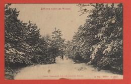 CP42 88 VOSGES 413 Foret Vosgienne En 1914 - France