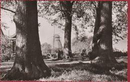 Boechout De Molen Windmolen Windmill Moulin A Vent - Boechout