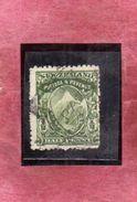 NEW ZEALAND NUOVA ZELANDA 1901 WHITE PAPER MT. COOK HALF PENNY 1/2p GREEN USATO USED OBLITERE' - 1855-1907 Crown Colony