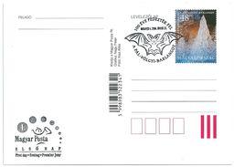 8197 Hungary FDC With SPM Postcard Fauna Animal Bat Nature Cave - Chauve-souris