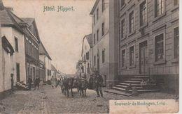 LUXEMBOURG - HOSINGEN - HOTEL HIPPERT - Other