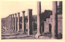 Afrique ALGERIE Wilaya De Sétif)  DJEMILA Le Grand Cardo  (cité Antique) Cpa Editions SPTGA 21 / 49 *PRIX FIXE - Sétif
