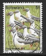 Botswana, Scott # 307 Used Birds, 1982 - Botswana (1966-...)