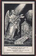 Frederik Hallaert Steenbeke Knesselare 1916 ENGEL ANGE ANGEL Doodsprentje Image Mortuaire - Images Religieuses
