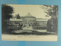 Malines Jardin Botanique Les Serres - Mechelen