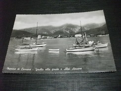MARINA DI CARRARA YACHTS ALLA FONDA E ALPI APUANE - Carrara