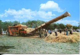 N°60201 -cpsm Battage à L'ancienne -l - Agriculture