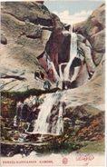 KABOUL - Ferzei-Kuhdamen   (101063) - Afghanistan