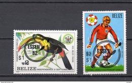BELIZE N° 580+581  NEUFS SANS CHARNIERE COTE 10.00€ OISEAUX ANIMAUX  FOOTBALL  VOIR DESCRIPTION - Belize (1973-...)