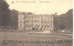 Château En Belgique - Hingene - Château D'Hingene - Châteaux