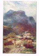 IN THE SCOTTISH HIGHLANDS - Scotland -HIGHLAND PASTURES - TUCK'S POST CARD - Peintures & Tableaux