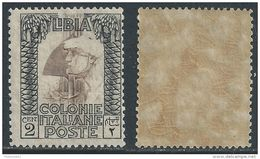 Italia Italy 1924 Colonie Libia Pittorica Senza Filigrana Dent 14 C2 Sa N.LI45 Nuovo Integro MNH ** - Libia