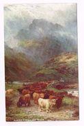 IN THE SCOTTISH HIGHLANDS - Scotland -ACROSS A HIGHLAND RIVER -  TUCK'S POST CARD - Schilderijen