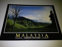New Unused Postcard Malaysia #4 - Malaysia