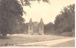 Château En Belgique - Brasschaet - Château Ter Borght - Châteaux