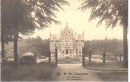 Château En Belgique - Cappellen - Oud Denneburg - Châteaux