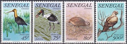 Senegal 1982 Tiere Fauna Animals Vögel Birds Schnepfe Storch Störche Geier Frankolin, Mi. 777-0 ** - Senegal (1960-...)