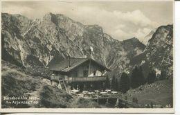 Bärenbad- Alm Am Achensee (002248) - Achenseeorte