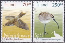 Island Iceland 2003 Tiere Fauna Animals Vögel Birds Wiesenpieper Brachvogel, Mi. 1042-3 ** - 1944-... Republik