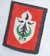 PATCH 19° DIVISION INFANTERIE - ALGERIE    1955-1962 - Uniforms