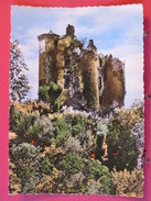 Visuel Pas Très Courant - 15 - Environs De Loupiac - Ruines Du Château De Branzac - Scans Recto-verso - Autres Communes
