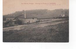 Les Hautes-Vosges - Chaume Et Ferme Du TANECK - France