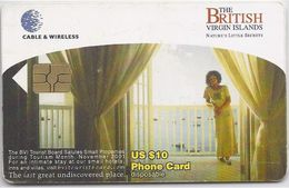 BRITISH VIRGIN ISLANDS - HOUSE TOURISM - RED CHIP - Virgin Islands