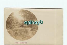 B - 85 - MORTAGNE SUR SEVRE - RARE CARTE PHOTO Du Logis De La Morandiers Et Espiot - Cliché Avant 1903 - Château - Mortagne Sur Sevre