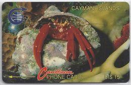 CAYMAN ISLANDS - CRAB - 1CCIC - Cayman Islands