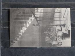 Z20 - 66 - Perpignan - Institution St Louis De Gonzague - Escalier Principal - 1904 - Perpignan