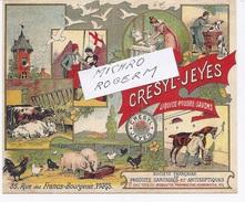 Document PUBLICITAIRE  De CRESYL-JEYES - Savons, Poudres, Liquides - Sté Française De Produits Sanitaires - 201217 - Publicité