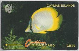 CAYMAN ISLANDS - YELLOW FISH - 5CCIB - Cayman Islands