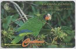 CAYMAN ISLANDS - GRAND CAYMAN PARROT -11CCIB - Cayman Islands