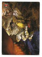 BUSOT (Alicante) - Cuevas De Canalobre - Vue Partielle - (A. Suribats-Casanova - Valencia) - Alicante