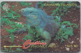 CAYMAN ISLANDS - GRAND CAYMAN IGUANA - 13CCIB - Cayman Islands