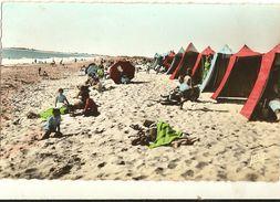 Cpsm Pf - La Faute-sur-Mer. La Plage à Marée Basse 8 - Autres Communes