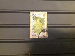 Bermuda - Vruchten (35) 1994 - Bermuda
