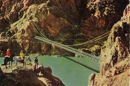 America > United States > AZ - Arizona - Kaibab Suspension Bridge,Grand Canyon National Park - United States