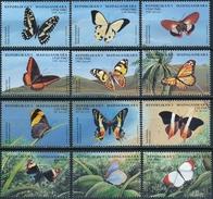 Madagaskar  Butterflies - Vlinders