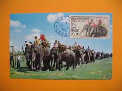 Card Maximum Laos- Carte Maximum Laos- Elephant - Laos