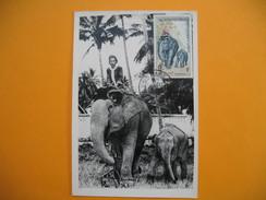 Card Maximum Viêt-Nam - Carte Maximum Viêt-Nam - Elephant - Laos